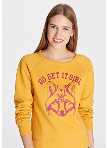Mavi Kurt Baskılı  Sweatshirt Sarı